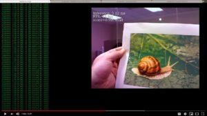 Google Coral TPU Analyzing Object on SBC